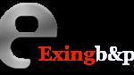 6 logo EX ING B&P